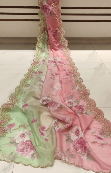 Latest Organza Cutwork Sarees (5)