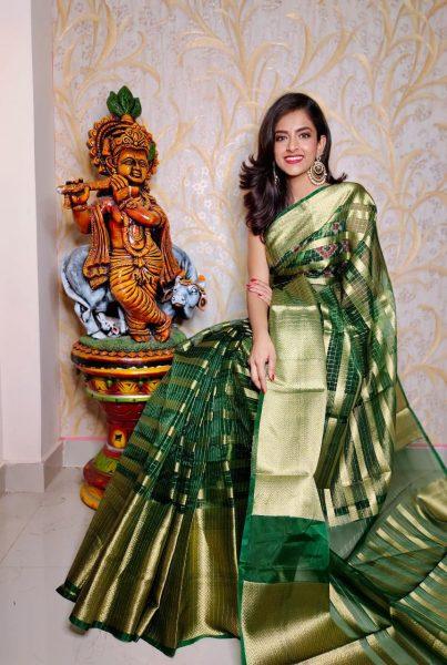 Banaras Tissue Organza Sarees With Blouse (1)
