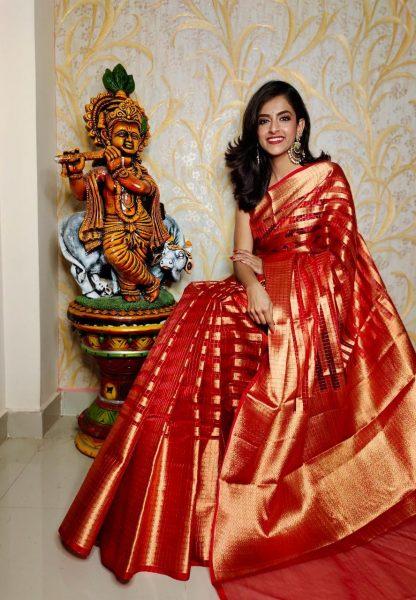 Banaras Tissue Organza Sarees With Blouse (7)