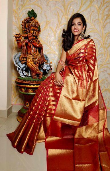 Banaras Tissue Organza Sarees With Blouse (8)